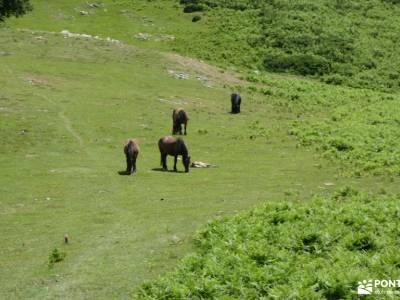 Aralar y Valle de Arakil -senderismo principiantes madrid rutas montaña cerca madrid viajes exclusiv